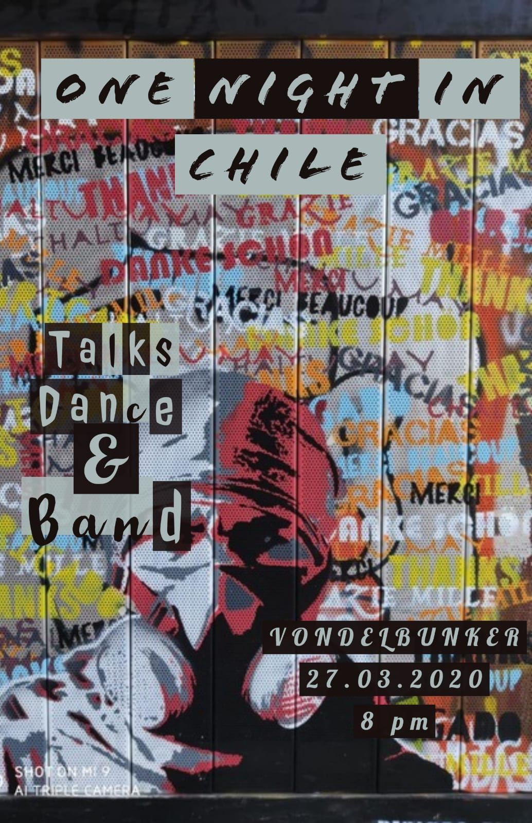 One night in Chile